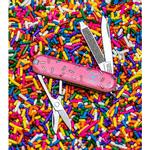 Victorinox-Classic-SD-Swiss-Army-Knife-Blade-HQ-Dessert-Warrior